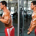 Arka Kol(Triceps) Programı